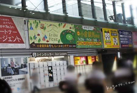 kokurakeibajo-12.jpg